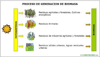 Proceso de generación de Biomasa