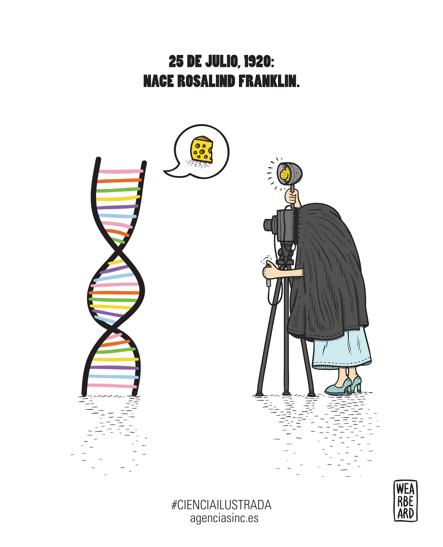 Rosalind Franklin radiografía del ADN